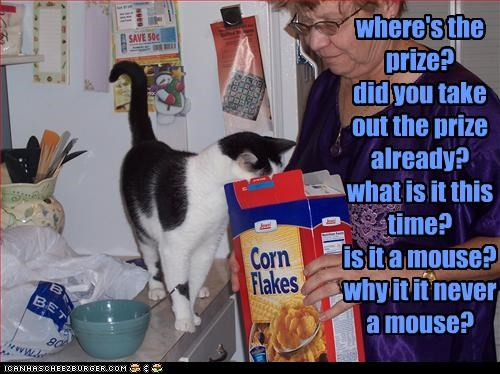 where's the prize? did you take out the prize already? what is it this time? is it a mouse? why it it never a mouse?