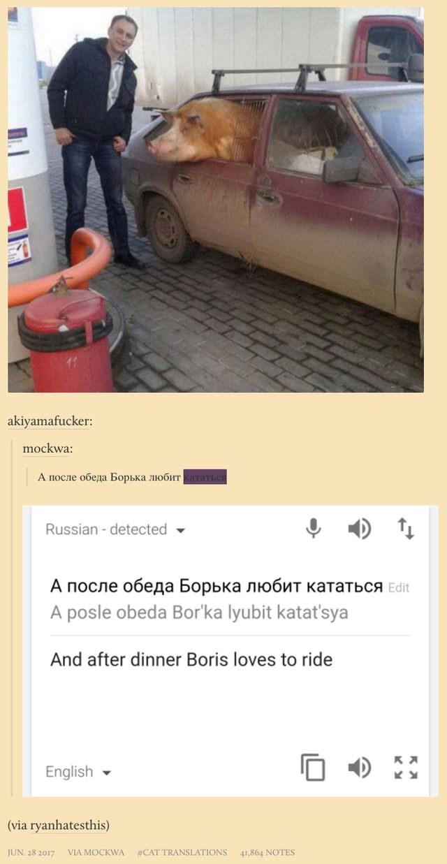 google translation of a russian caption