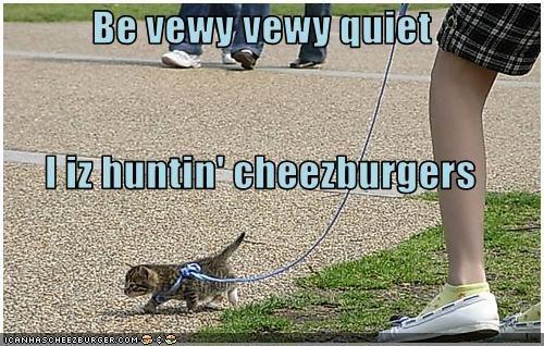 Cheezburger Image 2734908928