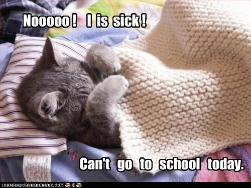 Nooooo ! I is sick ! Can't go to school today.