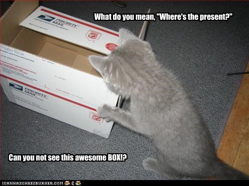 "What do you mean, ""Where's the present?"" Can you not see this awesome BOX!?"