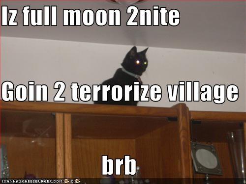 Iz full moon 2nite Goin 2 terrorize village brb