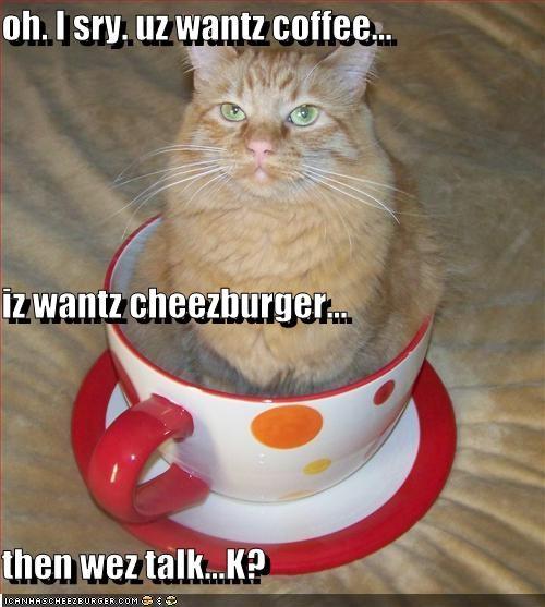 Cheezburger Image 2744036864