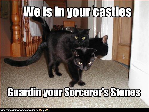 We is in your castles Guardin your Sorcerer's Stones