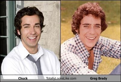 barry williams Chuck greg brady The Brady Bunch TV zachary levi - 2752694016