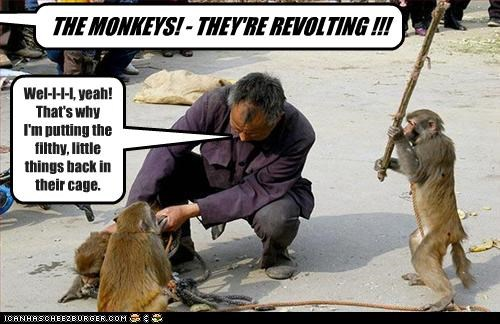 THE MONKEYS! - THEY'RE REVOLTING !!! Wel-l-l-l, yeah! That's why I'm putting the filthy, little things back in their cage.