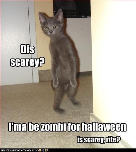 Dis scarey? I'ma be zombi for hallaween is scarey, rite?