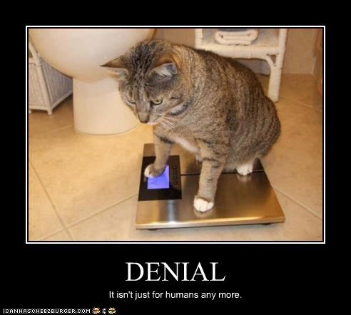 DENIAL It isn't just for humans any more.