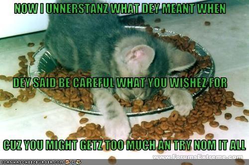 Cheezburger Image 2764601344