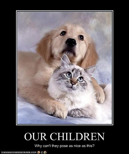 children golden retriever nice photos pose