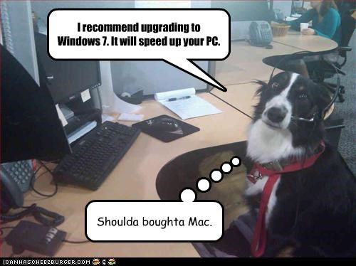 I recommend upgrading to Windows 7. It will speed up your PC. Shoulda boughta Mac.