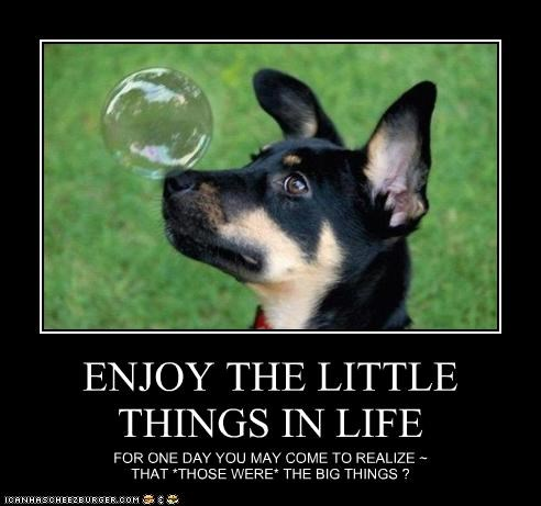 ENJOY THE LITTLE THINGS IN LIFE FOR ONE DAY YOU MAY COME TO REALIZE ~ THAT *THOSE WERE* THE BIG THINGS ?