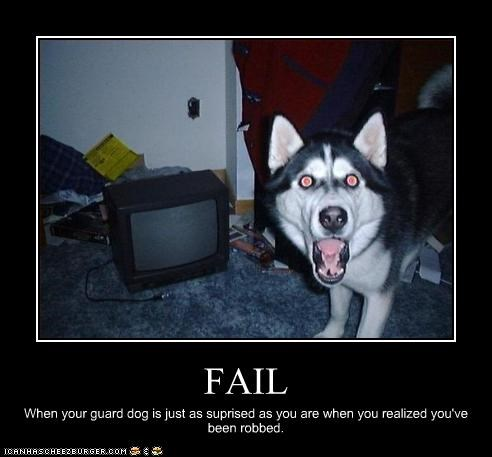 FAIL When your guard dog is just as suprised as you are when you realized you've been robbed.