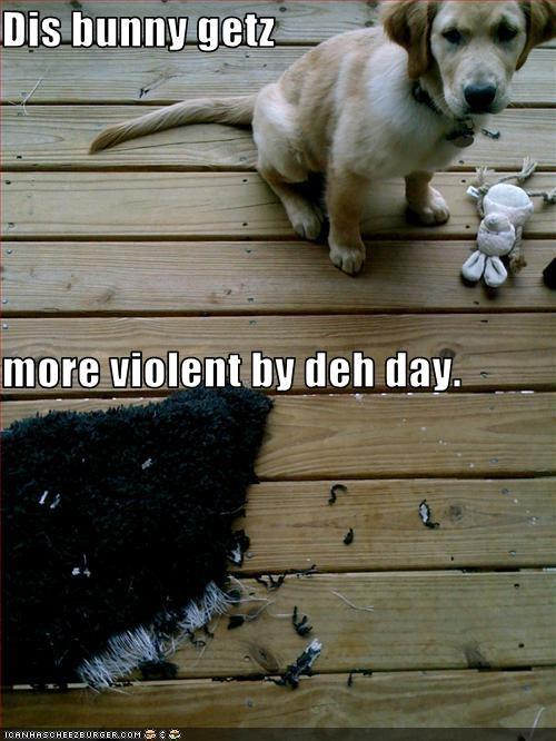 blame,bunny,destruction,labrador,stuffed animal,violent