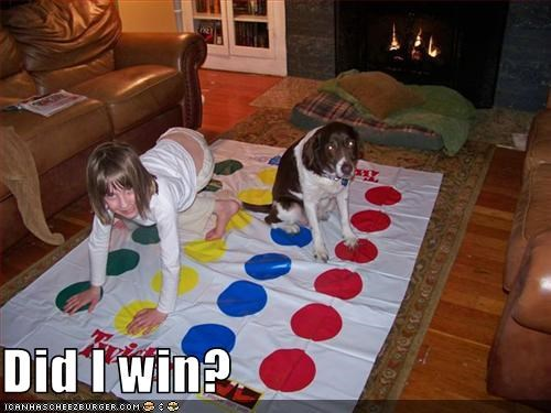 child,game,human,playing,springer spaniel,twister,win