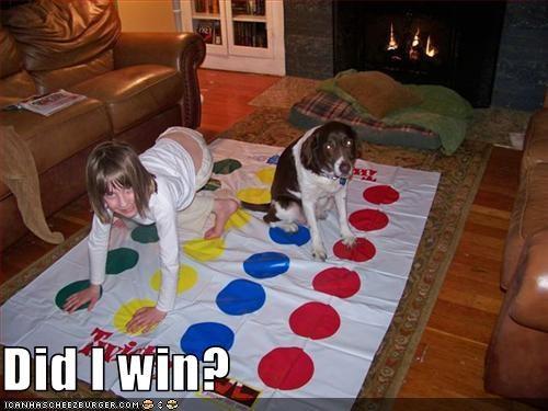 child game human playing springer spaniel win - 2773540864