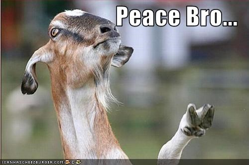 lolgoats,peace