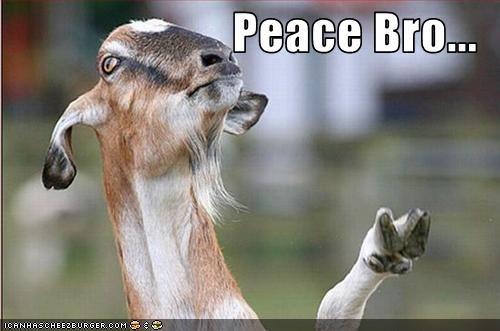 lolgoats peace - 2775102208