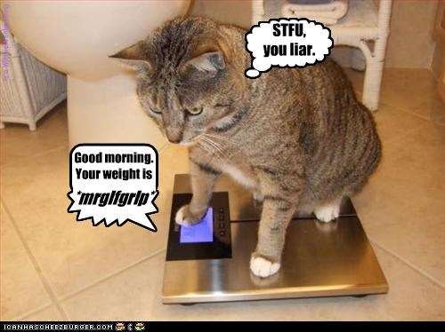 and again... { n n n n Good morning. Your weight is *mrglfgrlp* ] STFU, you liar. is a WinnieWonka thing