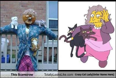 This Scarecrow Totally Looks Like Crazy Cat Ladyenter Name Here