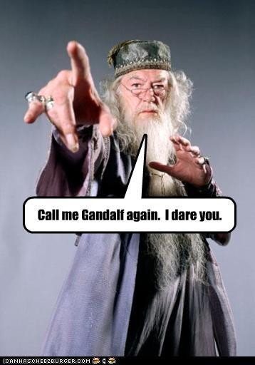 Albus Dumbledore gandalf Harry Potter Michael Gambon sci fi - 2777002496