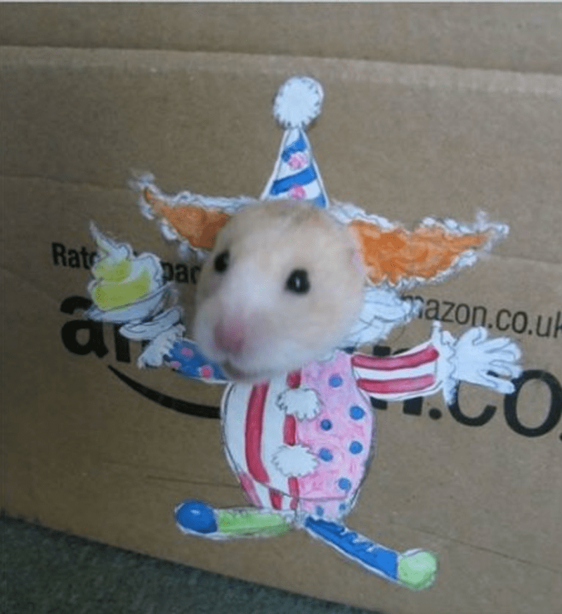 a hamster sticking its head out of an amazon cardboard box through a tiny hole and on the outside it looks like hes dressed as a clown - cover for a list on a hamster and girl that dresses him up