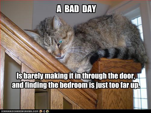 A BAD DAY Is barely making it in through the door, and finding the bedroom is just too far up.