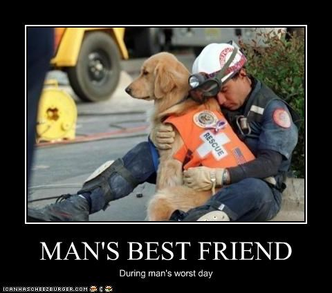 MAN'S BEST FRIEND During man's worst day