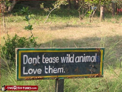 Wild Animals have feelings too... Dont tease wild animals Love them