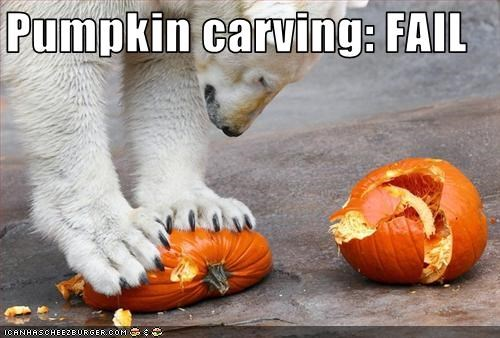 FAIL lolbears polar bears pumpkins - 2784939776
