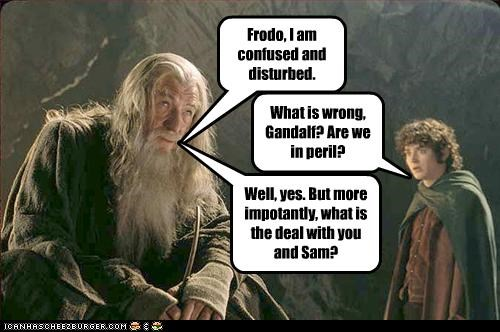 Frodo, I am confused and disturbed. What is wrong, Gandalf? Are we in peril? Well, yes. But more impotantly, what is the deal with you and Sam?
