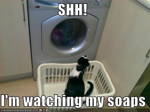 TV washing machine watching - 2790351104