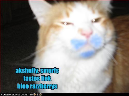 Cheezburger Image 2790948352