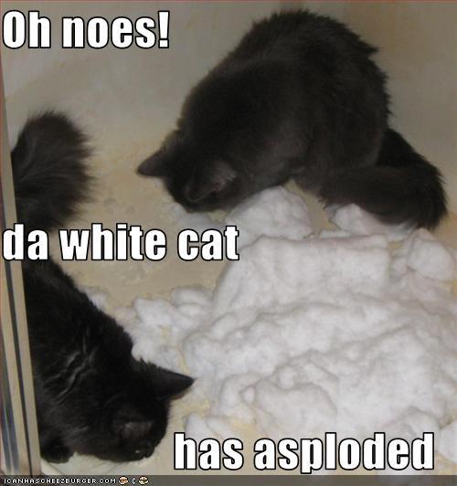 asplode,oh noes