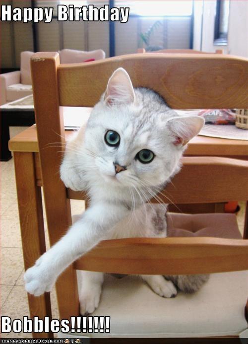 happy birthday meme of a cute cat sticking its head through a chair