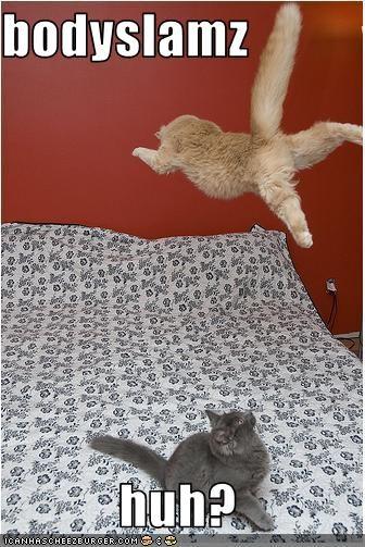 attacking jumping wrestling - 2798356224