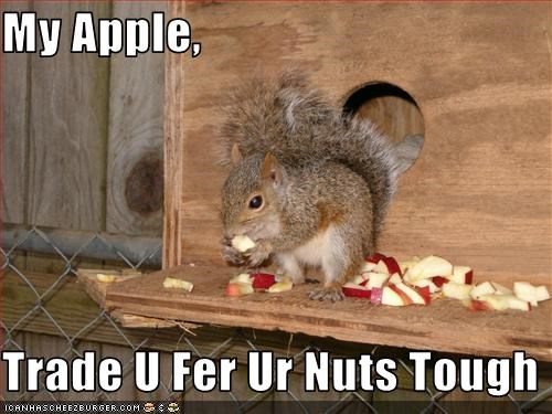 My Apple,  Trade U Fer Ur Nuts Tough