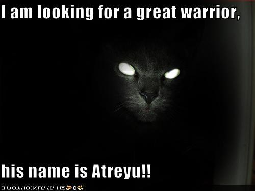 I am looking for a great warrior, his name is Atreyu!! - Cheezburger