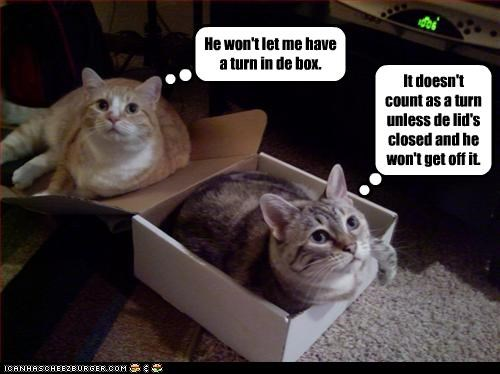 He won't let me have a turn in de box. It doesn't count as a turn unless de lid's closed and he won't get off it.