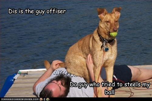 balls human officer police sit steal whatbreed - 2804325632