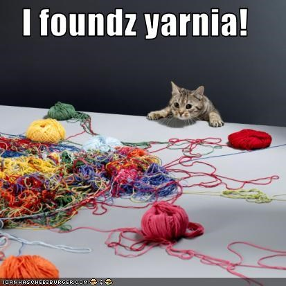 excited,narnia,yarn
