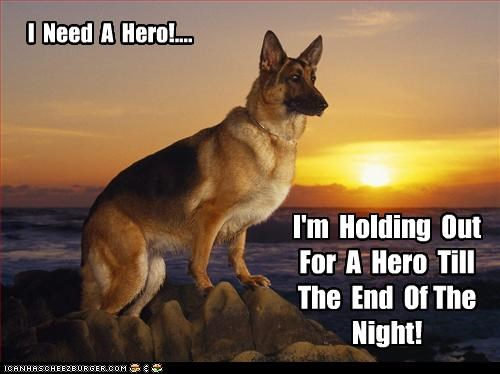 I Need A Hero!.... I'm Holding Out For A Hero Till The End Of The Night!