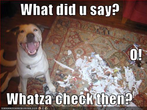 Cheezburger Image 2805448192