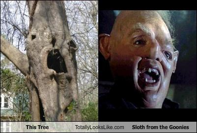 face,Hall of Fame,movies,sloth,the goonies,tree