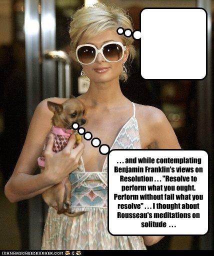 dogs famous for no reason paris hilton stupid - 2810491136