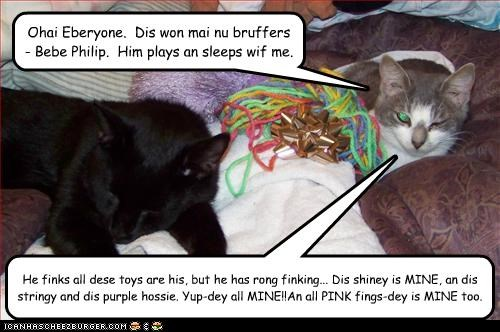 Ohai Eberyone.  Dis won mai nu bruffers - Bebe Philip.  Him plays an sleeps wif me.