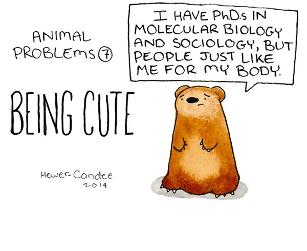 an adorable brown bear telling us his animal problems - cover for a list of animal problem comics
