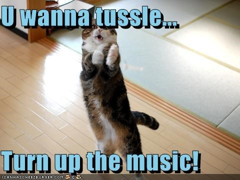 U Wanna Tussle Turn Up The Music Cheezburger Funny Memes