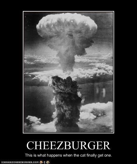 Cheezburger Image 2814537216