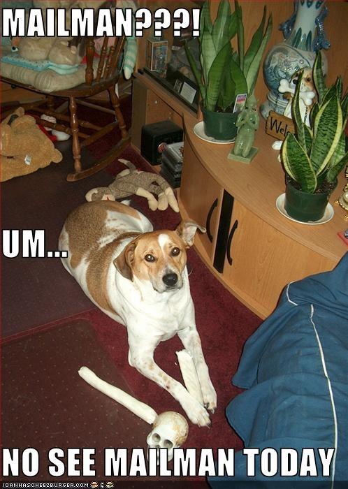 bones guilty mailman suspicious whatbreed